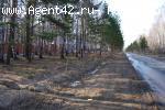 Журавли. Участок 1,8 га у дороги в лесу с выходом на обрыв. Собственность.  - май 2017 год.