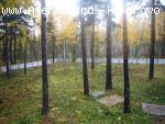 Усадьба - дача в лесу вблизи д. Ляпки.- Елыкаево. Кемерво