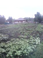 Продается 1/2 жилого кирпичного дома д. Новороманово.