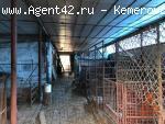 Жилой дом + Ферма на Красной горке в Кемерово. купить жилой дом. бизнесс.