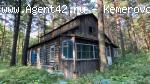 Турбаза с земельным участком 4 га., Сосновый бор