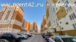 3-к квартира-студия 76 кв.м.на пр. Московский