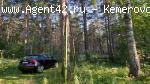 Земельный участок 0,8 га. Елыкаево - Старые черви. река Томь.